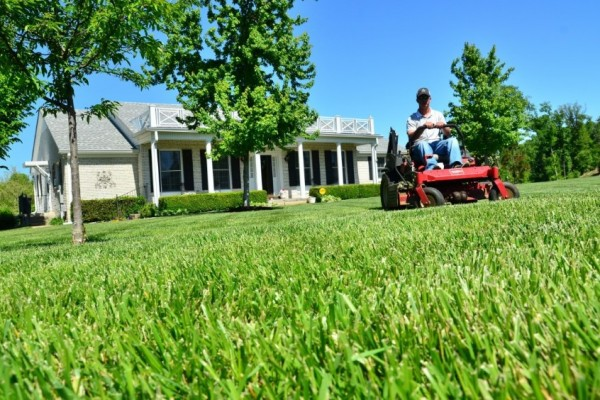 Košnja trave na velikih površinah – olajšajte si delo!